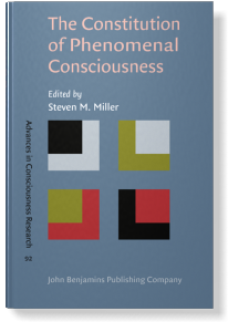 Theories of Consciousness as Reflexivity